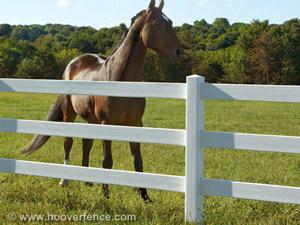 pasture fence