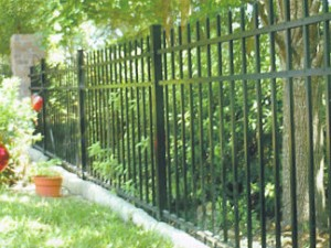 Kinglet security fence