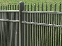 Kinglet Metal Fence